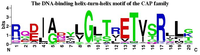 Weblogo Examples